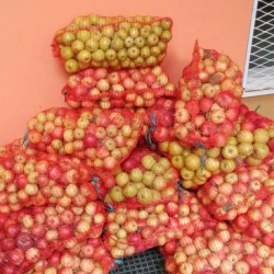 Donation of fruits
